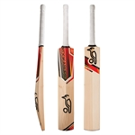 BLAZE PRO 700-bats-Sportspower Nowra | Online Sports Store | Fitness | Running | Football | Cricket | NRL